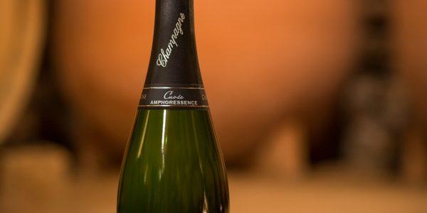 Amphoressence_champagne